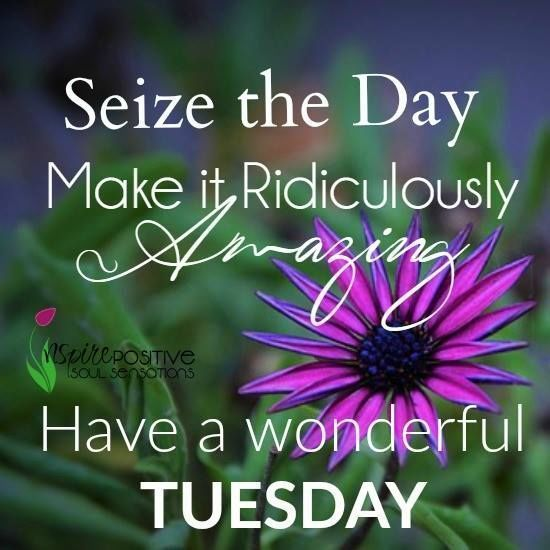amazing Tuesday